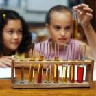 Curso Ciências para o Ensino Fundamental