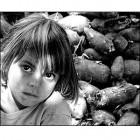 Curso de Assistência a Crianças e Adolescentes em Situação de Risco