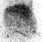 Curso de Tecnologia Criminalística